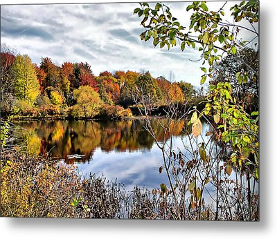 Tinkers Creek Metal Print by Monnie Ryan