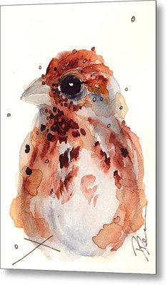 Tiny Sparrow Metal Print by Dawn Derman
