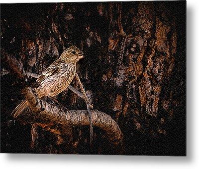 Tiny Sparrow Huge Tree Metal Print by Bob and Nadine Johnston