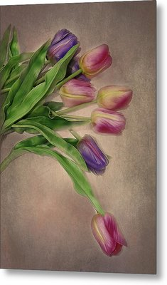 Tip Toe Thru The Tulips Metal Print