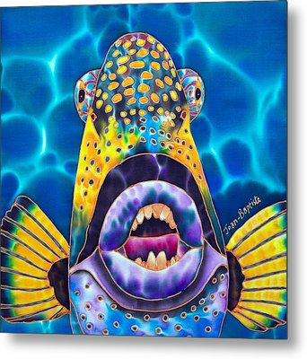 Titan Triggerfish Metal Print