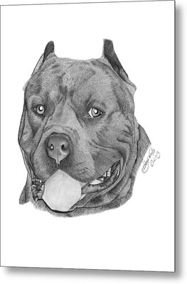 Metal Print featuring the drawing Titus - 024 by Abbey Noelle