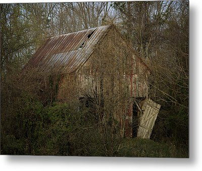 Metal Print featuring the photograph To Be Versed In Country Things by Rebecca Sherman