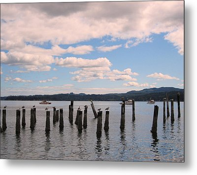 To Each His Own Metal Print by Kym Backland