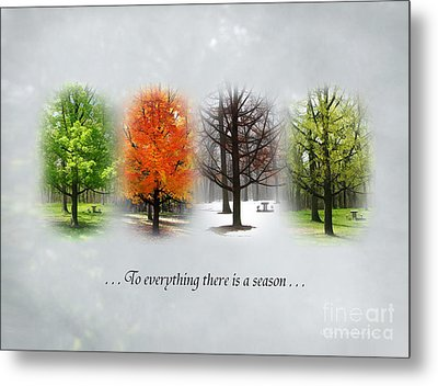 To Everything There Is A Season Metal Print by Clare VanderVeen