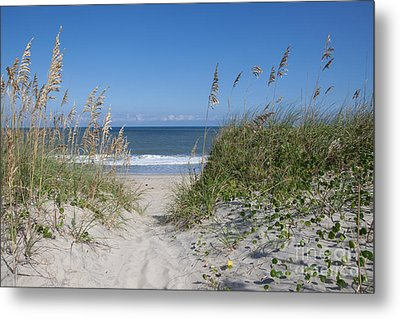 To The Beach Metal Print by Kay Pickens