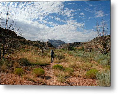 Metal Print featuring the photograph To The Desert by Jon Emery