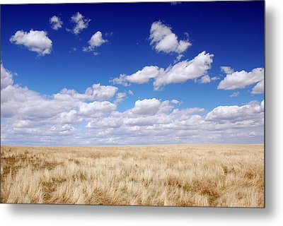 Metal Print featuring the photograph To The Horizon by Kjirsten Collier