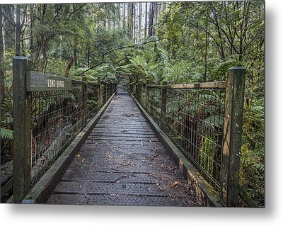 To The Other Side Metal Print by Shari Mattox