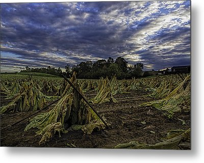 Tobacco Road II Metal Print
