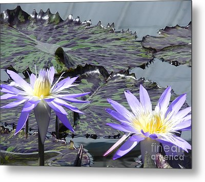 Together Is Beauty Metal Print by Chrisann Ellis