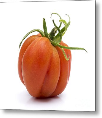 Tomato Metal Print by Bernard Jaubert