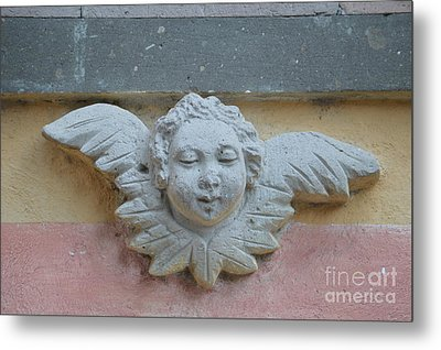 Too Fat To Fly Metal Print