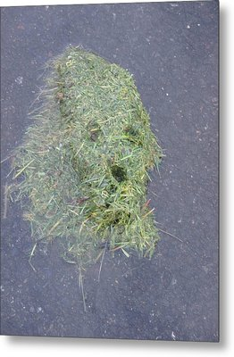 Metal Print featuring the photograph Too Much Grass Man by Marie Neder