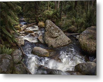 Metal Print featuring the photograph Tooronga River by Kim Andelkovic