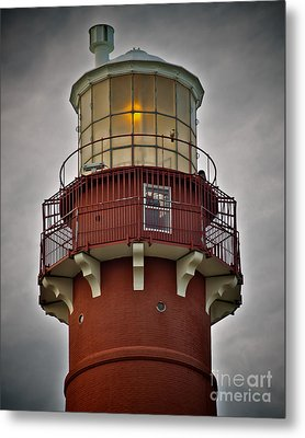 Top Of Barney 2007 - Hawk's Perch Metal Print by Mark Miller