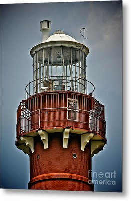 Top Of Barney 2012 Metal Print by Mark Miller
