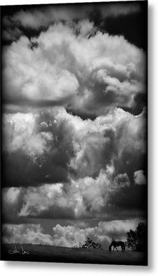 Top Of The World Metal Print by Joan Davis
