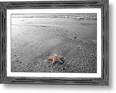 Topsail Island The Lone Star Metal Print by Betsy Knapp