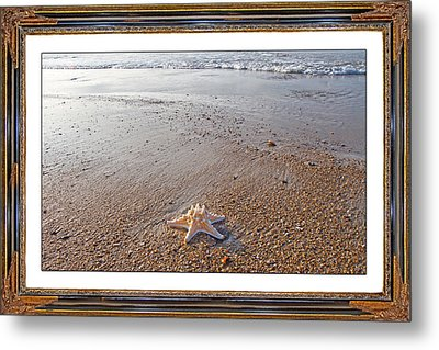 Topsail Island The Only One Metal Print by Betsy Knapp