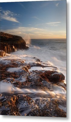 Metal Print featuring the photograph Panther Beach - Torment  by Francesco Emanuele Carucci