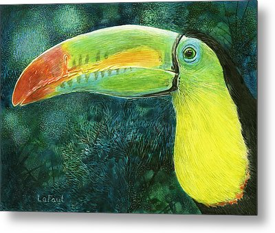 Toucan Metal Print by Sandra LaFaut