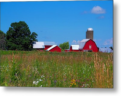 Metal Print featuring the photograph Touch Of Color by Dave Files