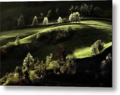 Touch Of Light Metal Print