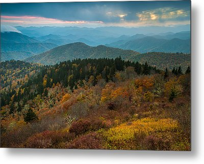 Metal Print featuring the photograph Touch Of Yellow by Joye Ardyn Durham
