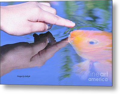 Touching The Koi.  Metal Print by Debby Pueschel