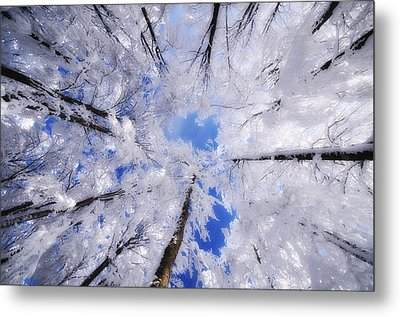 Metal Print featuring the photograph Tourniquet by Philippe Sainte-Laudy
