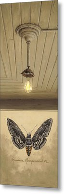Toward The Light Metal Print by Ron Crabb