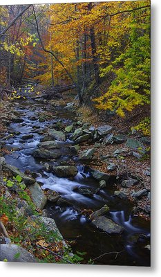 Tracking Color - Big Hunting Creek Catoctin Mountain Park Maryland Autumn Afternoon Metal Print by Michael Mazaika
