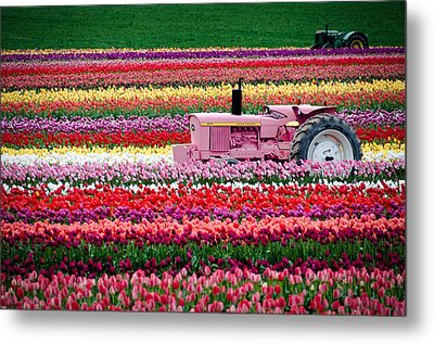 Metal Print featuring the photograph Tractor Races by Brian Bonham