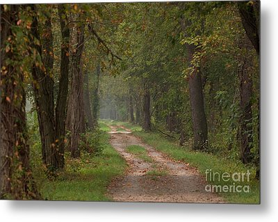 Trail Along The Canal Metal Print