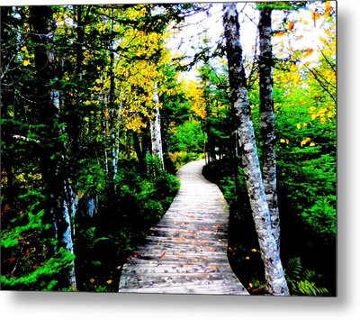Trail To Autumn Metal Print by Zinvolle Art