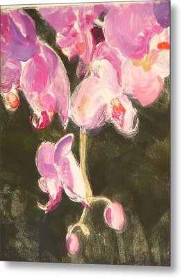 Trailing Phal Metal Print by Valerie Lynch