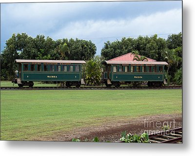 Train Lovers Metal Print by Suzanne Luft