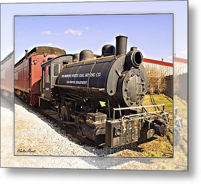 Train Metal Print by Walter Herrit
