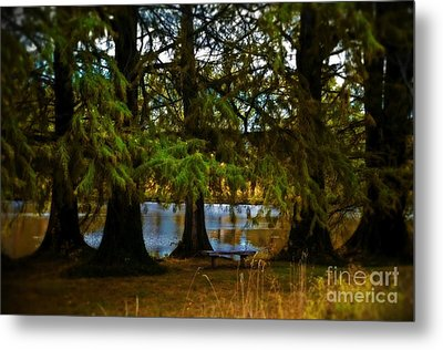 Tranquil And Serene Metal Print