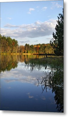 Tranquil Autumn Landscape Metal Print by Christina Rollo