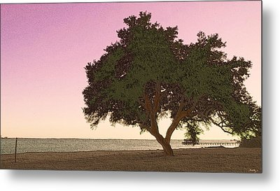 Tranquil Florida Bay Metal Print by Glenn McCarthy Art and Photography