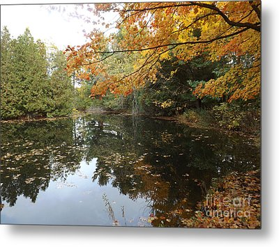 Metal Print featuring the photograph Tranquil Getaway by Brenda Brown