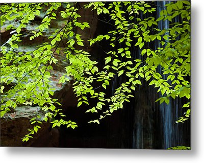 Metal Print featuring the  Tranquil by Haren Images- Kriss Haren