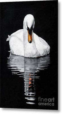 Tranquil Reflection Metal Print by Sheryl Unwin