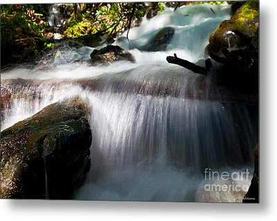 Tranquility  Metal Print by Chris Heitstuman