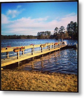 Tranquility Metal Print by Lisa Wooten