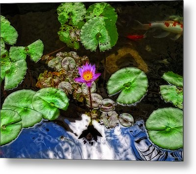 Tranquility - Lotus Flower Koi Pond By Sharon Cummings Metal Print by Sharon Cummings