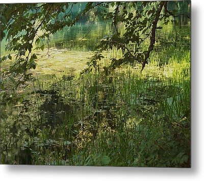 Tranquility Metal Print by Mary Wolf