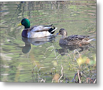 Tranquility Metal Print by Mary Zeman